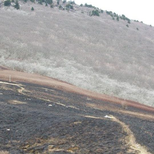 An area of charred, blackened ground along a section of trail near the summit of a bald mountain.